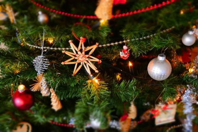 Makro Weihnachtsbaum